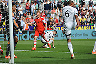 Harrison Reed of Southampton celebrates teammates Rickie Lambert's (out of pic) late second half goal as Ben Davies of Swansea City holds his head in his hands.<br /> Barclays Premier league match, Swansea city v Southampton at the Liberty stadium in Swansea, South Wales on Saturday 3rd May 2014.<br /> pic by Phil Rees, Andrew Orchard sports photography.