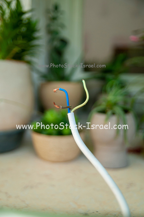 Electric wire with three insulated copper cables
