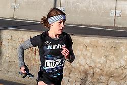 rabbit<br /> NYRR NYC Half Marathon