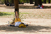 A man lies on the grass with his feet resting on a tree in St Jamess Park in London, England during sunny weather in the ongoing summer heatwave on August 07, 2018.