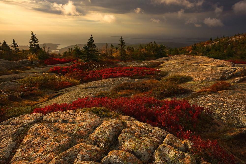 Warm glowing light at sunrise on Cadillac Mountain,  Acadia National Park, Maine, USA