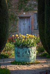 Tulips in the Cottage Garden at Sissinghurst Castle in spring