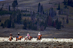 Horseback riding in Yellowstone National Park. This trail ride is just west of Swan Lake.