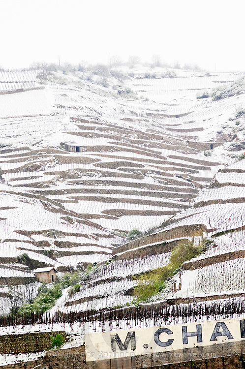 La Chapelle, and l'Ermite vineyard. The Hermitage vineyards on the hill behind the city Tain-l'Hermitage, on the steep sloping hill, stone terraced. Sometimes spelled Ermitage. Vineyards under snow in seasonably exceptional weather in April 2005. Tain l'Hermitage, Drome, Drôme, France, Europe