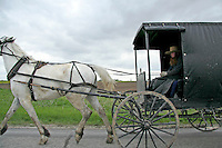 Amish Carriage, Harmony, Minnesota