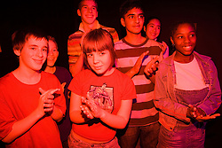 Group of teenagers dancing to music at a pop concert,