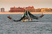 23 JANUARY 2003 - PUERTO PENASCO, SONORA, MEXICO: Shrimp boats come back to port past new hotels that have recently opened or under construction in Puerto Penasco, Sonora, Mexico, Jan. 23, 2003. Puerto Penasco was founded as a fishing port on the Sea of Cortez by Mexican fisherman who used to fish Mexico?s Pacific waters. In recent years, North Americans, primarily from Arizona and California, have turned the town into a tourists? resort. The North Americans call the town Rocky Point and the name is starting to appear on Mexican maps and road signs. Several large hotels and hundreds of condominiums are under construction in Puerto Penasco. At the same time, new fishing regulations and over fishing are forcing many in the fishing industry to search for new jobs. PHOTO BY JACK KURTZ
