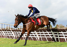 BBA Ireland Opera Hat Mares Chase Day - Naas Racecourse - 09 February 2019