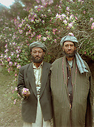 Two brothers and sheep traders (as well as opium dealers?... could be...) from Baharak under a wild rose bush. They are returning with their flock from 10 days in the Little Pamir. They will spend a total of 40 days on the road. Barak.<br /> <br /> Adventure through the Afghan Pamir mountains, among the Afghan Kyrgyz and into Pakistan's Karakoram mountains. July/August 2005. Afghanistan / Pakistan.