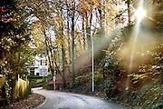 Nederland, Ubbergen, 17-11-2014Het was een dag met mooi herfstweer. Herfstbos. De gemeente Beek-Ubbergen is in 2007 uitgeroepen tot de groenste van Nederland. Zij ligt voor een deel op een heuvelrug, stuwwal met bossen en waterlopen en bronnen. Er bevinden zich veel statige villas uit de 19e, begin 20e eeuw met parkachtige tuinen. Foto: Flip Franssen/Hollandse Hoogte