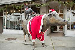 United States, Washington, Kirkland, Christmas