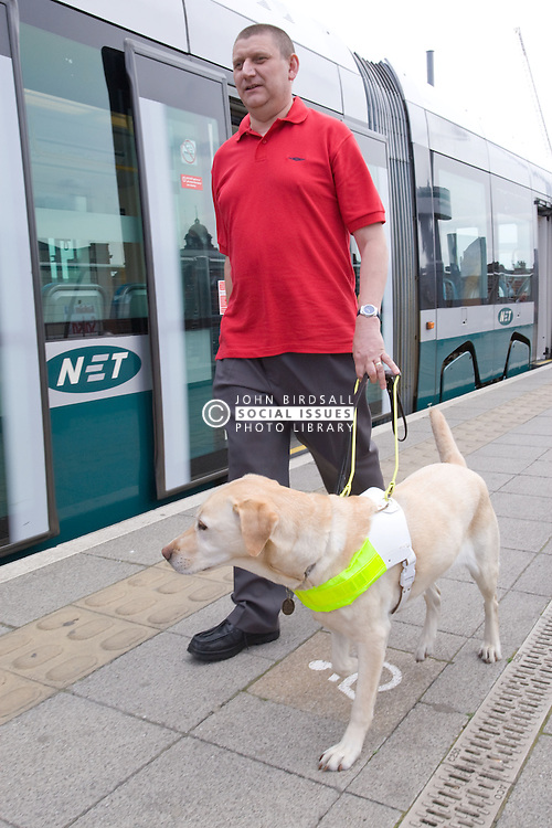 Vision impaired man with guide dog walking along the platform at the tram stop,