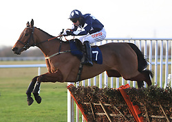 Shanty Alley ridden by Wayne Hutchinson jumps the last to win The EBF National Hunt Maiden Hurdle Race at Huntingdon Racecourse.