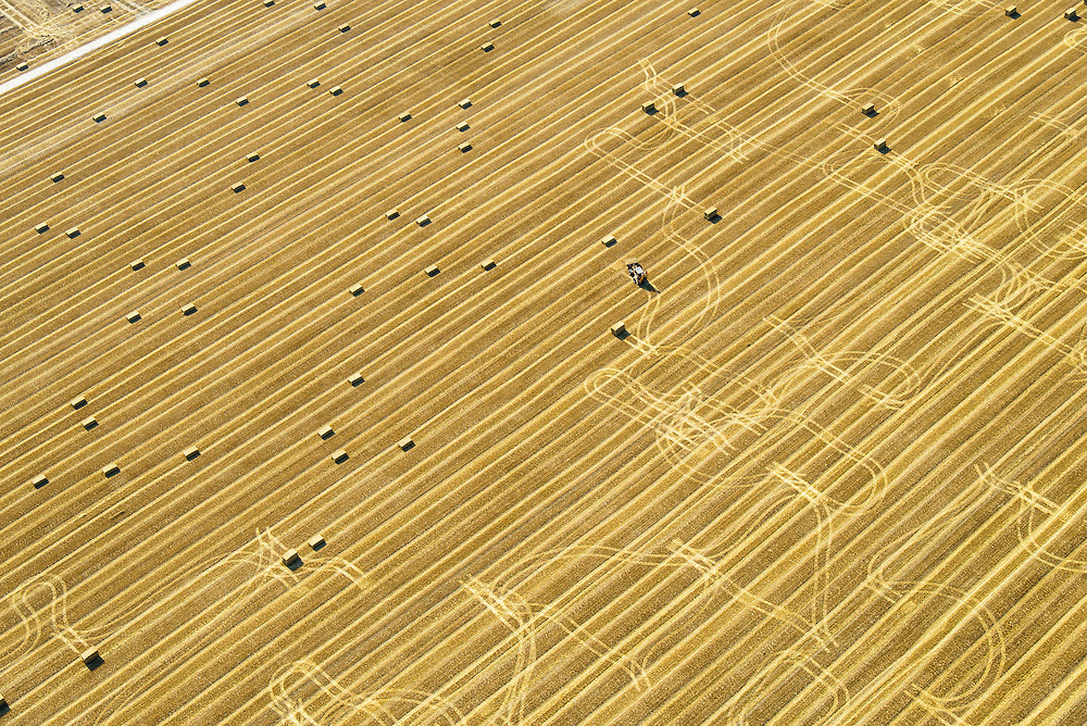 Nederland, Flevoland, Gemeente Dronten, 27-08-2013; velden na het maaien van het graan, ten westen van Biddinghuizen. Strobalen worden verzameld.<br /> Straw bales are being collected after harvesting the grain, in the polder near Biddinghuizen.<br /> luchtfoto (toeslag op standaard tarieven);<br /> aerial photo (additional fee required);<br /> copyright foto/photo Siebe Swart.