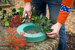 Making a Christmas wreath with holly using an oasis ring.