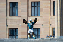 February 8, 2018 - Philadelphia, Pennsylvania, U.S - Philadelphia Eagles mascot, SWOOP, dancing on the Rocky Steps, at  the Philadelphia Eagles Super Bowl celebration in Philadelphia PA (Credit Image: © Ricky Fitchett via ZUMA Wire)