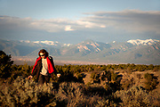 She collects rocks on the mesa with the Sangre de Cristos at her shoulder, Taos Mountains, Taos, New Mexico