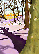 Drawing of hill with Crocus in Brooklyn's  Prospect Park