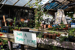 Sipson, UK. 5th June, 2018. A sign is pictured at Grow Heathrow offering homegrown plants to visitors. Grow Heathrow is a squatted off-grid eco-community garden founded in 2010 on a previously derelict site close to Heathrow airport to rally support against government plans for a third runway and it has since made a significant educational and spiritual contribution to life in the Heathrow villages, which remain threatened by Heathrow airport expansion.