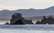 Sea stacks along the Washington coast's Olympic Coast Marine Sanctuary. (Steve Ringman / The Seattle Times)