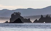 Sea stacks along the Washington coast's Olympic Coast Marine Sanctuary. (Steve Ringman / The Seattle Times)