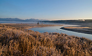First light on the Yellowstone river as the mist slowly clears.