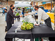"23 MAY 2020 - AMES, IOWA: JASON JONES, right, observes ""social distancing"" guidelines while he sells salad greens to a customer at his stand at the Farmers' Market in downtown Ames. Jones grows his greens on a farms in Maxwell, IA. He said it felt ""really good"" to be able to reopen his market stand. The Ames Main Street Farmers' Market reopened Saturday after nearly a month of only online sales because of Iowa's bans on large gatherings caused by the COVID-19 pandemic. Only about 15 venders set up stalls Saturday and attendance was significantly lower than normal. All of the venders wore face masks and many, but not all, of the shoppers wore face masks. Farmers' markets are popular community gatherings in Iowa, but they've been on hiatus since the Coronavirus (SARS-CoV-2) pandemic. At this time, Iowa farmers' markets are not allowed to have entertainment or sell non-food or non-agricultural goods.         PHOTO BY JACK KURTZ"