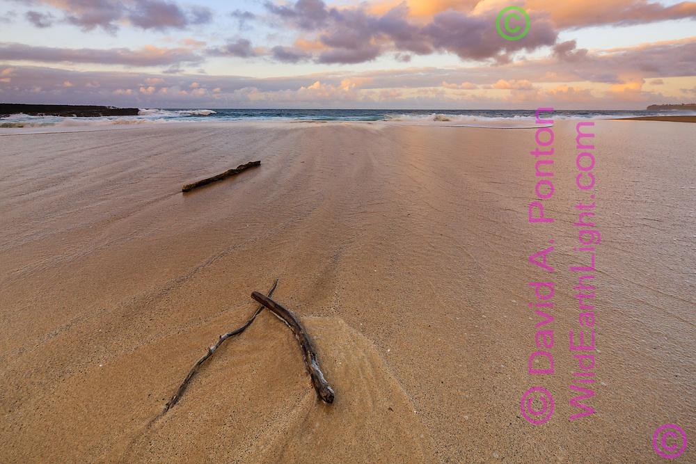 Driftwood pattern on wave-washed beach at sunset, Lumiha'i Beach, Kauai, Hawaii, © David A. Ponton