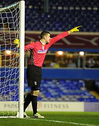 Birmingham City's Colin Doyle - Photo mandatory by-line: Joe Meredith/JMP - Tel: Mobile: 07966 386802 14/01/2014 - SPORT - FOOTBALL - St Andrew's Stadium - Birmingham - Birmingham City v Bristol Rovers - FA Cup - Third Round