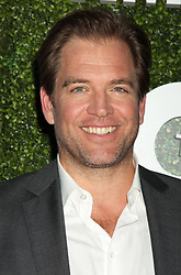 Michael Weatherly, CBS, The CW, and Showtime - Summer TCA Party, Pacific Design Center (West Hollywood, CA.)