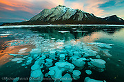 Abraham Lake in Nordegg, Alberta, Canada in winter, with its famous methane bubbles frozen in the clear ice.