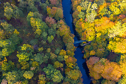 Autumn colours on trees and footbridge crossing River Garry at Killiecrankie, Perthshire , Scotland, UK