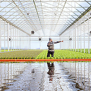 Sfera, the largest hydroponic greenhouse in southern Europe