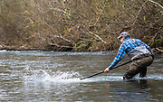 Justin makes a hopeful stab to keep a big steelhead out of the brush.