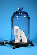Marshmallows are placed in a vacuum chamber and the air is removed.  As the air is removed the pressure drops causing the air trapped in the marshmallows to expand.  The trapped air expands to many the original volume and the marshmallows grows in size.  This image is part of a series taken at different vacuum pressures.