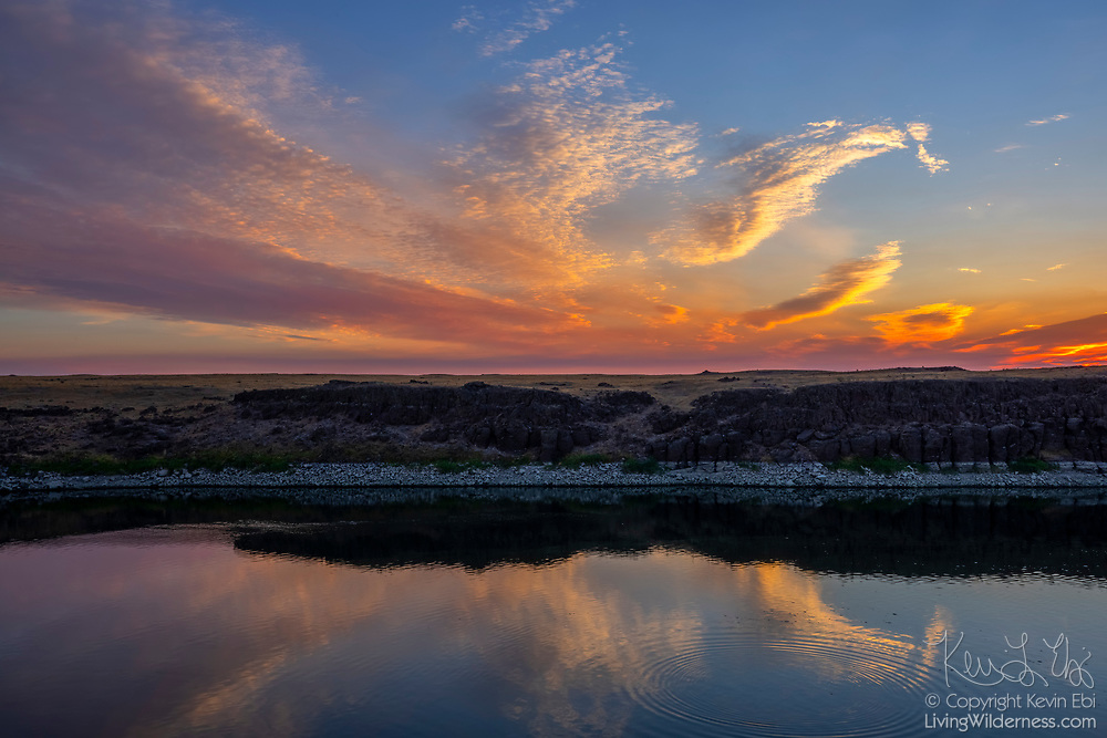 Bands of high clouds are turned golden by the rising sun and reflected on the waters of the Potholes Canal in the Columbia National Wildlife Refuge in Grant County, Washington.