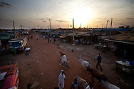 The market at a shanty town outside of Bentiu the capital of Unity state where most of South Sudan's oil is pumped. There is eletricity infrastructure, but no electricity.