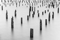 Wooden piers in Columbia River, Astoria, Oregon, USA