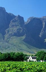 Boschendal,Stellenbosch, South Africa (Credit Image: © Axiom/ZUMApress.com)