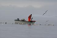 08: CRUISE DISKO BAY FISHERMEN