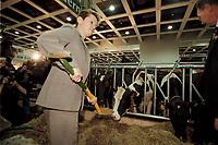 19 JAN 2001, BERLIN/GERMANY:<br /> Renate Kuenast, B90/Gruene, Bundesverbraucherschutz- und landwirtschaftsministerin, fuettert die Kuehe auf dem Erlebnis Bauernhof. Eroeffnungsrundgang der Gruenen Woche, Messegelaende Berlin <br /> IMAGE: 20010119-01/02-14<br /> KEYWORDS: Reate Künast, Grüne Woche, Kuh, Rind,