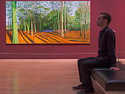 Woldgate woods 6 &9 November, 2006 - David Hockney, a major new retrospective, at Tate Britain's. It includes more than 200 works and celebrates Hockney's achievement in painting, drawing, print, photography and video. As he approaches his 80th birthday, this exhibition offers an unprecedented overview of the artist's 60-year career. It runs from 9 Feb to 29 May 2017. London 06 Feb 2017.