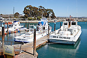 Dana Wharf Fishing Boats In Dana Point Harbor