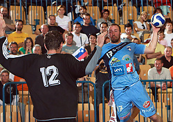Vid Kavticnik of Slovenia vs goalkeeper Richard Stochl at  handball game between men national teams of Slovenia and Slovakia, first qualification game for the World Chamionship 2009, on June 7, 2008, in Arena Zlatorog, Celje, Slovenija. Result: 33 : 33. (Photo by Vid Ponikvar / Sportal Images)