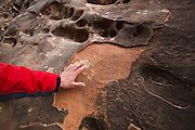University of Colorado geomorphology professor Robert Anderson points out heat weathered rock on a sandstone wall of Little Wild Horse Canyon, San Rafael Swell, Utah. Darker surfaces are more susceptible since they absorb more heat from the sun.