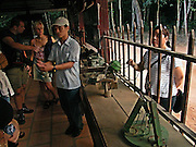 Vietnam, Cu Chi, tour guide showing to the tourists home made traps made by Vietcong with natural materials such as wood and bamboo. They used as well to recycle unexploded  Americans bombs, and animals like snakes and bees. Everything was allowed to fight the enemy.