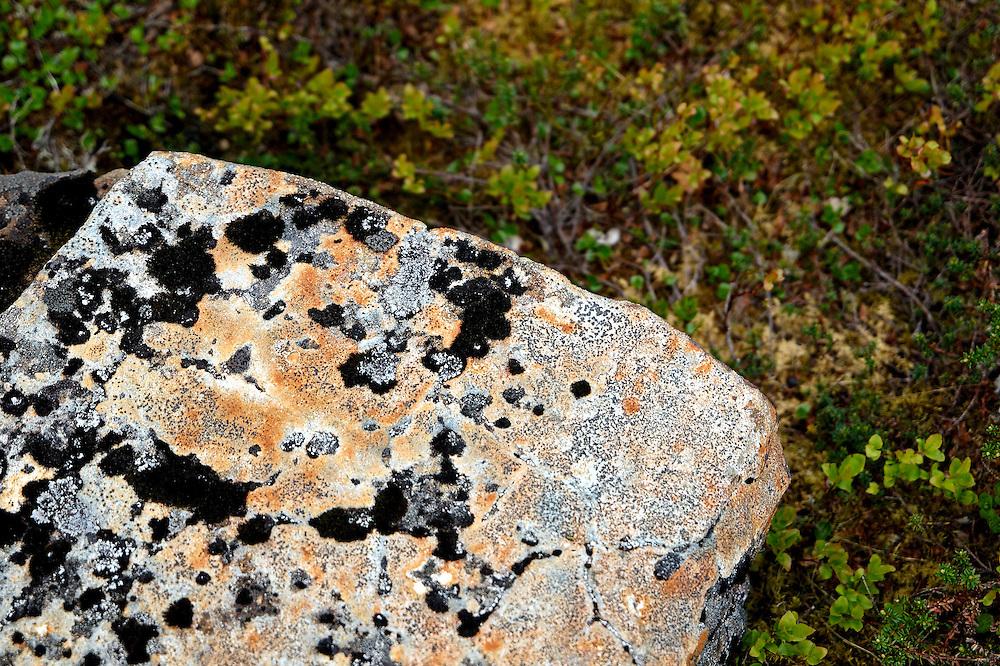 Norway - Rock