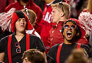 Nov 12, 2011; Fayetteville, AR, USA;  Arkansas Razorbacks fans cheer during a game against the Tennessee Volunteers at Donald W. Reynolds Razorback Stadium. Arkansas defeated Tennessee 49-7. Mandatory Credit: Beth Hall-US PRESSWIRE