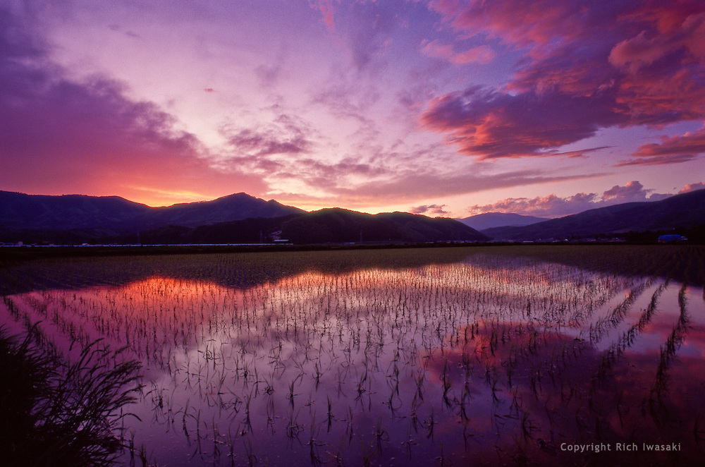 Flooded rice field at sunset, Tono, Iwate Prefecture, Japan