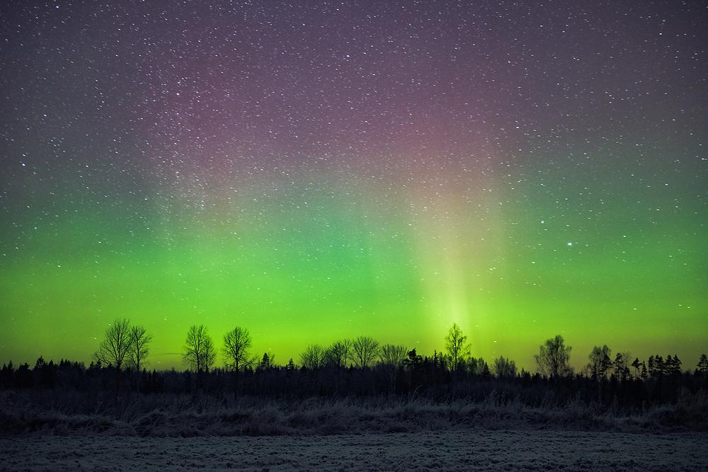 The dancing curtain of Northern lights on New Years eve, Northern Vidzeme, Latvia Ⓒ Davis Ulands | davisulands.com